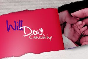 Will Doo Consulting